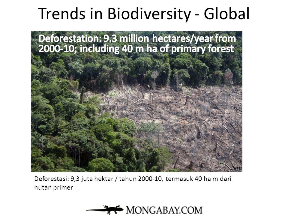 Trends in Biodiversity - Global 8 of 10 warmest years since 1880 have occurred since 1998 8 dari 10 tahun terpanas sejak 1880 telah terjadi sejak tahun 1998 mongabay.com