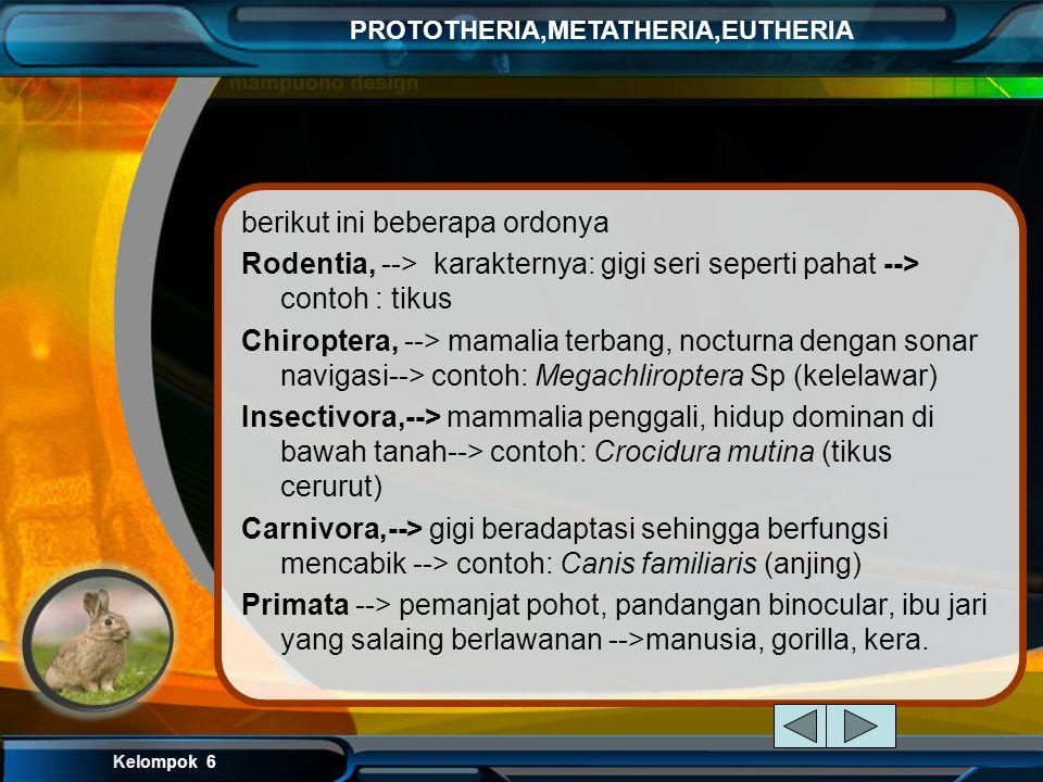 Kelompok 6 PROTOTHERIA,METATHERIA,EUTHERIA EUTHERIA Eutheria adalah salah satu dari tiga kelompok besar mamalia hidup. Marsupial, atau Metatheria, ada