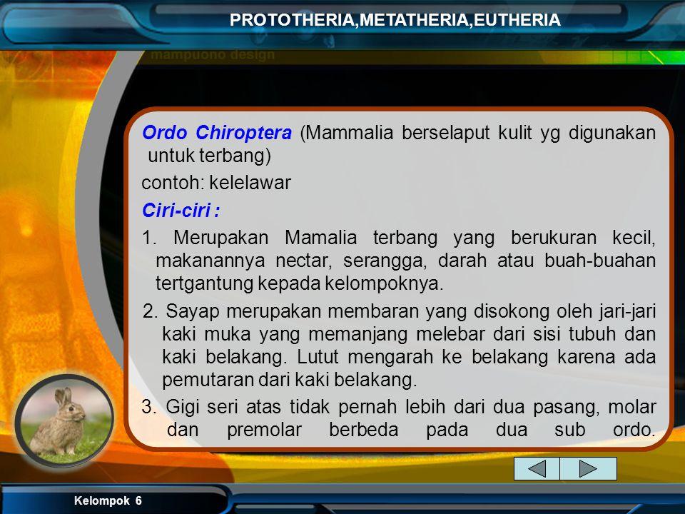 Kelompok 6 PROTOTHERIA,METATHERIA,EUTHERIA Eutheria memiliki ciri-ciri umum : a. melahirkan anak yang telah berkembang di rahim. Embrio mendapat nutri