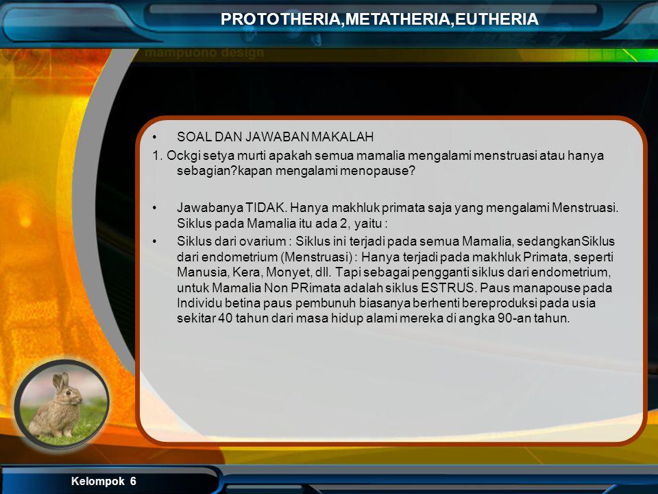 Kelompok 6 PROTOTHERIA,METATHERIA,EUTHERIA Klasifikasi Kerajaan : Animalia Filum : Chordata Kelas : Mammalia Ordo : Rodentia Subordo : Sciuromorpha Fa