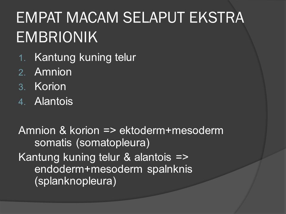 EMPAT MACAM SELAPUT EKSTRA EMBRIONIK 1. Kantung kuning telur 2. Amnion 3. Korion 4. Alantois Amnion & korion => ektoderm+mesoderm somatis (somatopleur