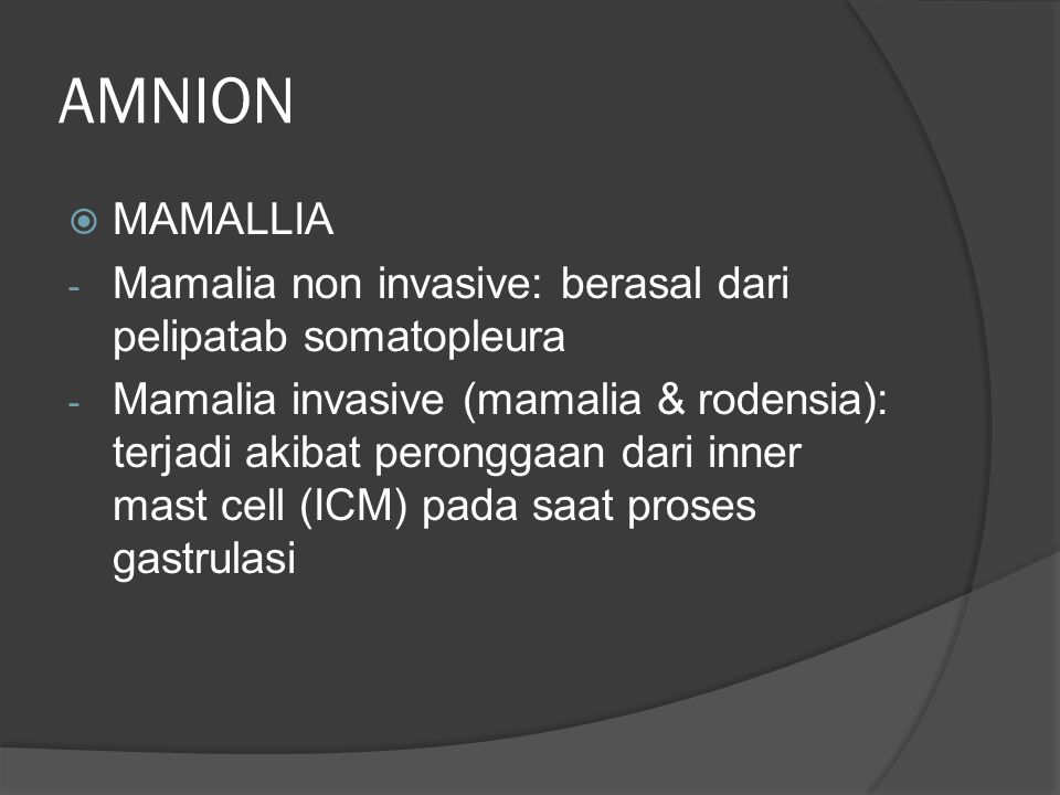 AMNION  MAMALLIA - Mamalia non invasive: berasal dari pelipatab somatopleura - Mamalia invasive (mamalia & rodensia): terjadi akibat peronggaan dari