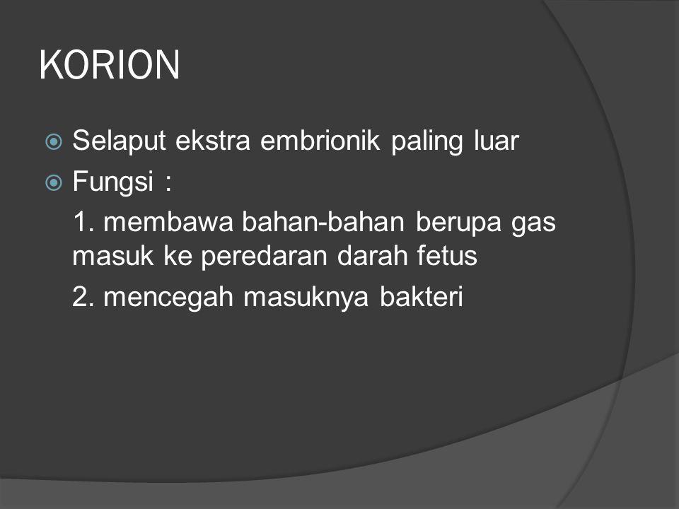KORION  Selaput ekstra embrionik paling luar  Fungsi : 1. membawa bahan-bahan berupa gas masuk ke peredaran darah fetus 2. mencegah masuknya bakteri