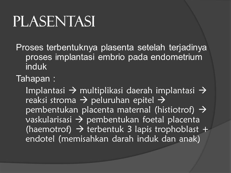 PLASENTASI Proses terbentuknya plasenta setelah terjadinya proses implantasi embrio pada endometrium induk Tahapan : Implantasi  multiplikasi daerah