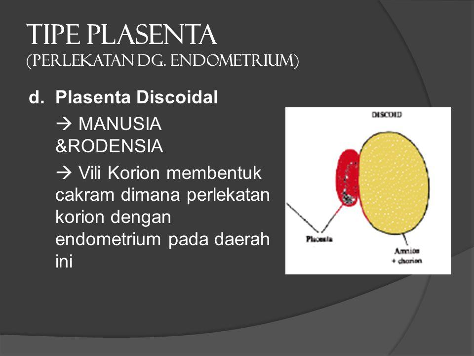 TIPE PLASENTA (PERLEKATAN dg. ENDOMETRIUM) d. Plasenta Discoidal  MANUSIA &RODENSIA  Vili Korion membentuk cakram dimana perlekatan korion dengan en