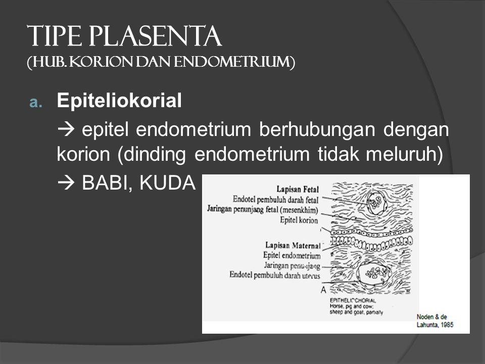 TIPE PLASENTA (hub. Korion dan endometrium) a. Epiteliokorial  epitel endometrium berhubungan dengan korion (dinding endometrium tidak meluruh)  BAB