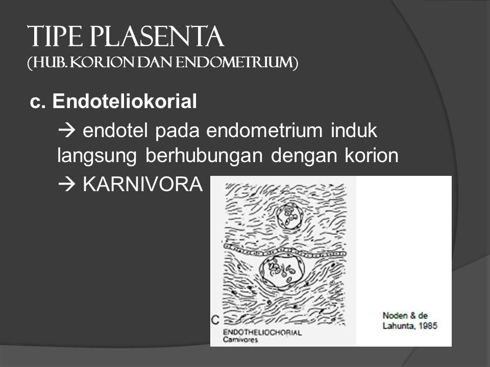 TIPE PLASENTA (hub. Korion dan endometrium) c. Endoteliokorial  endotel pada endometrium induk langsung berhubungan dengan korion  KARNIVORA