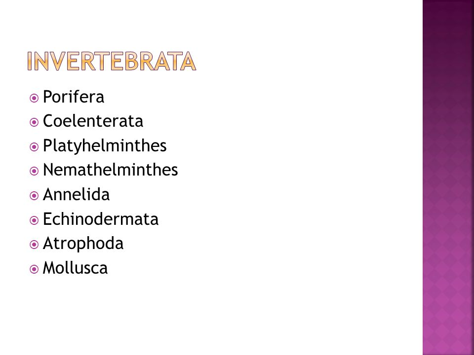  Porifera  Coelenterata  Platyhelminthes  Nemathelminthes  Annelida  Echinodermata  Atrophoda  Mollusca