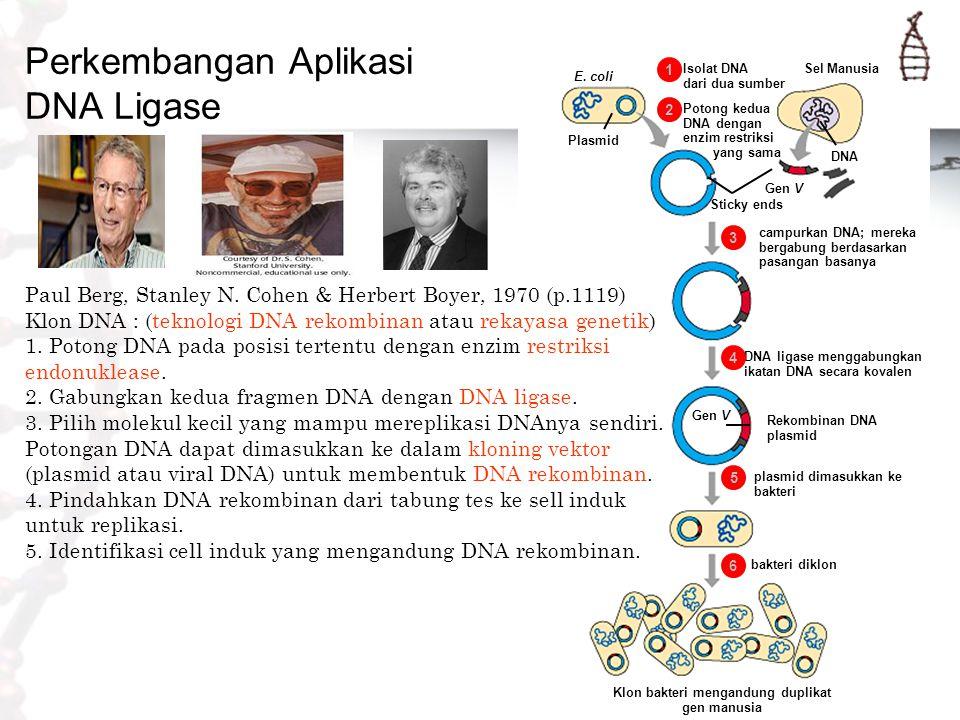 Isolat DNA dari dua sumber 1 E. coli Potong kedua DNA dengan enzim restriksi yang sama 2 Plasmid Sel Manusia DNA Gen V Sticky ends campurkan DNA; mere
