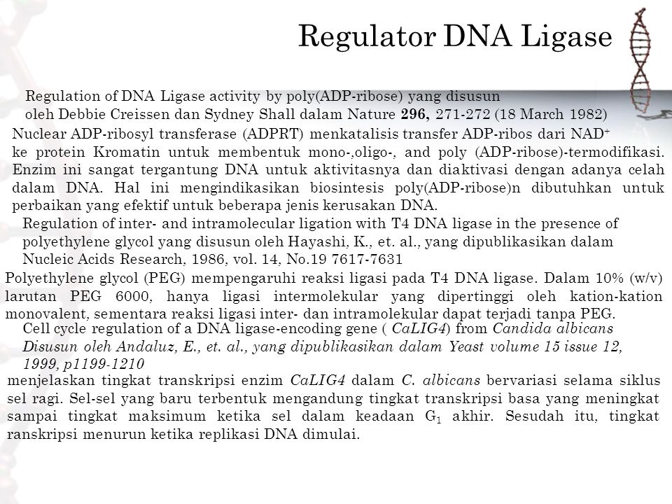 Regulator DNA Ligase Regulation of DNA Ligase activity by poly(ADP-ribose) yang disusun oleh Debbie Creissen dan Sydney Shall dalam Nature 296, 271-272 (18 March 1982) Cell cycle regulation of a DNA ligase-encoding gene ( CaLIG4 ) from Candida albicans Disusun oleh Andaluz, E., et.