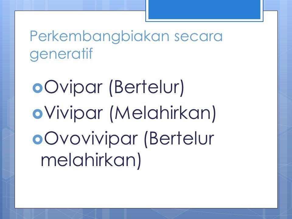 Perkembangbiakan secara generatif  Ovipar (Bertelur)  Vivipar (Melahirkan)  Ovovivipar (Bertelur melahirkan)