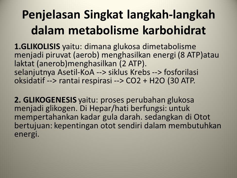 Macam-macam polisarida 8. GLIKOPROTEIN – Terdapat di cairan tubuh dan jaringan – terdapat di membran sel – merupakan Protein + karbohidrat Gula menunj