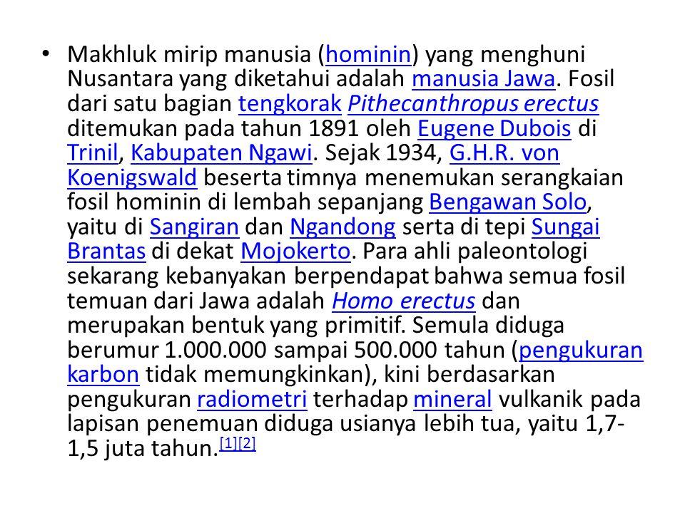 Makhluk mirip manusia (hominin) yang menghuni Nusantara yang diketahui adalah manusia Jawa. Fosil dari satu bagian tengkorak Pithecanthropus erectus d