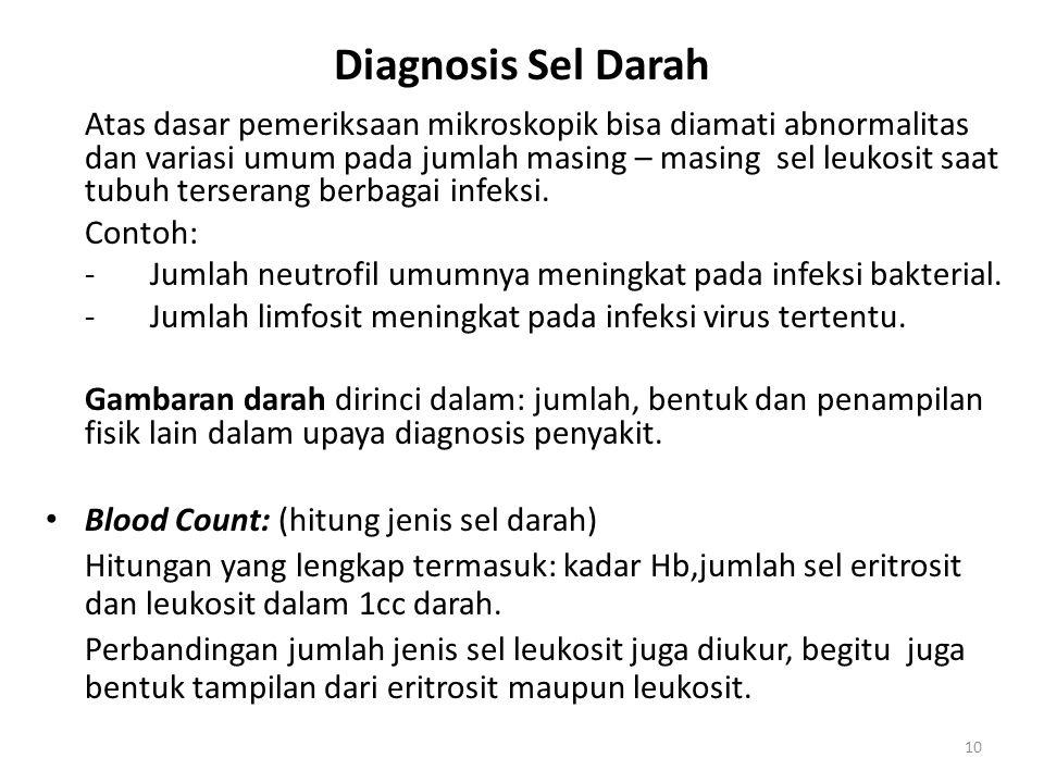 10 Diagnosis Sel Darah Atas dasar pemeriksaan mikroskopik bisa diamati abnormalitas dan variasi umum pada jumlah masing – masing sel leukosit saat tub