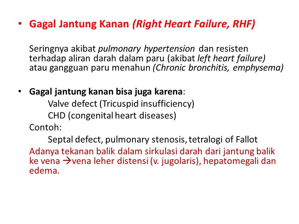 Gagal Jantung Kanan (Right Heart Failure, RHF) Seringnya akibat pulmonary hypertension dan resisten terhadap aliran darah dalam paru (akibat left hear