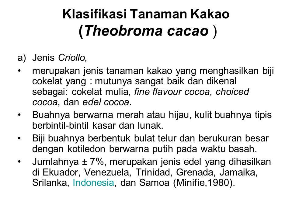 Klasifikasi Tanaman Kakao (Theobroma cacao ) a)Jenis Criollo, merupakan jenis tanaman kakao yang menghasilkan biji cokelat yang : mutunya sangat baik