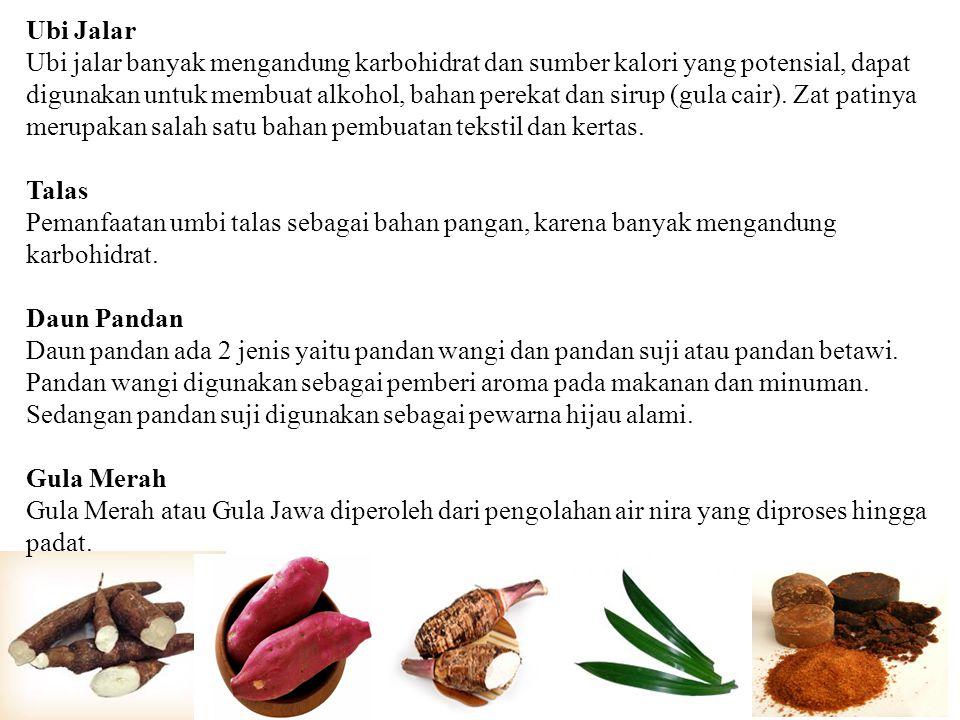 Ubi Jalar Ubi jalar banyak mengandung karbohidrat dan sumber kalori yang potensial, dapat digunakan untuk membuat alkohol, bahan perekat dan sirup (gu