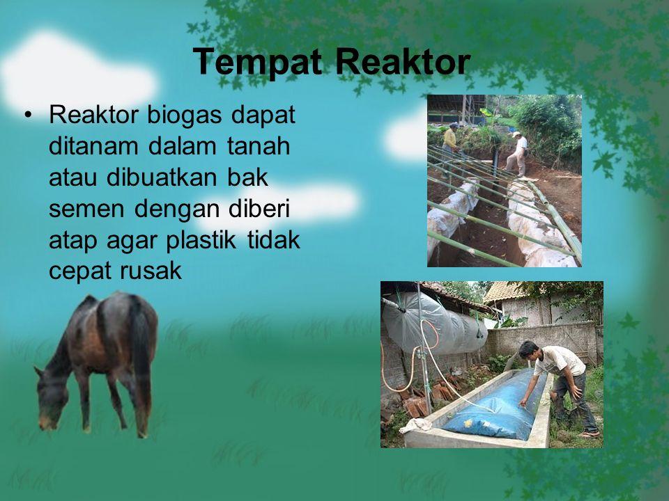 Tempat Reaktor Reaktor biogas dapat ditanam dalam tanah atau dibuatkan bak semen dengan diberi atap agar plastik tidak cepat rusak