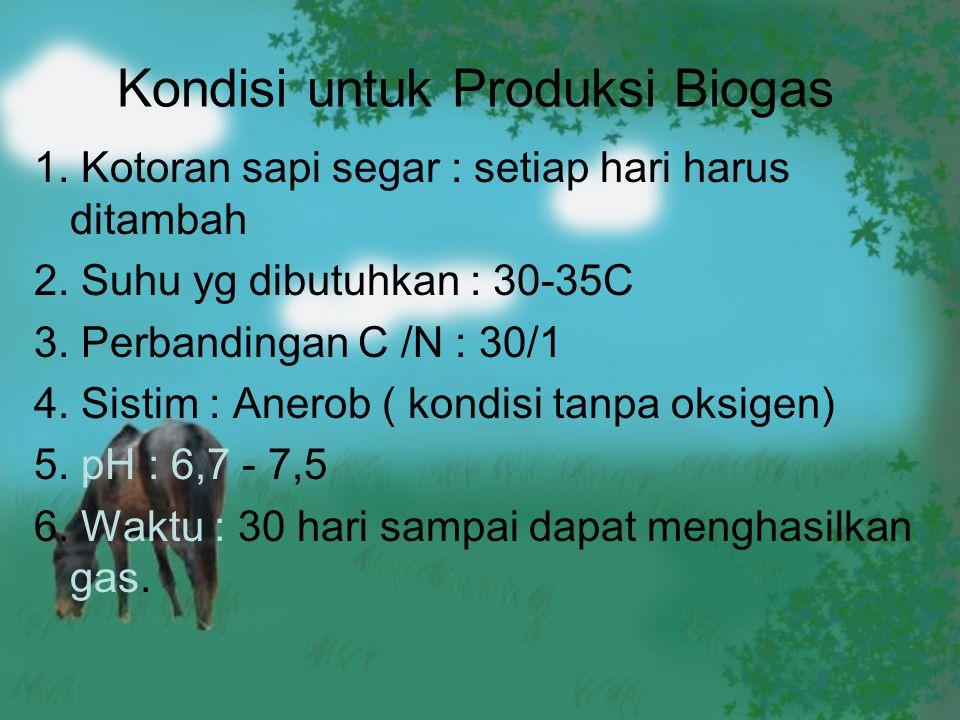 Kondisi untuk Produksi Biogas 1. Kotoran sapi segar : setiap hari harus ditambah 2. Suhu yg dibutuhkan : 30-35C 3. Perbandingan C /N : 30/1 4. Sistim