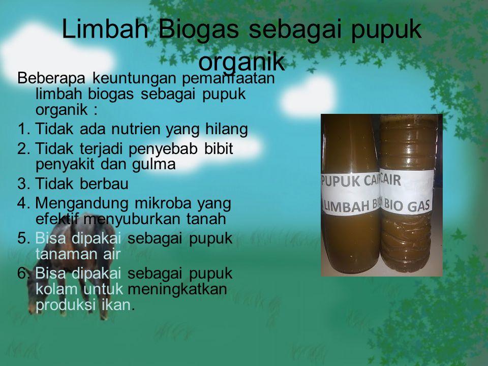 Limbah Biogas sebagai pupuk organik Beberapa keuntungan pemanfaatan limbah biogas sebagai pupuk organik : 1. Tidak ada nutrien yang hilang 2. Tidak te