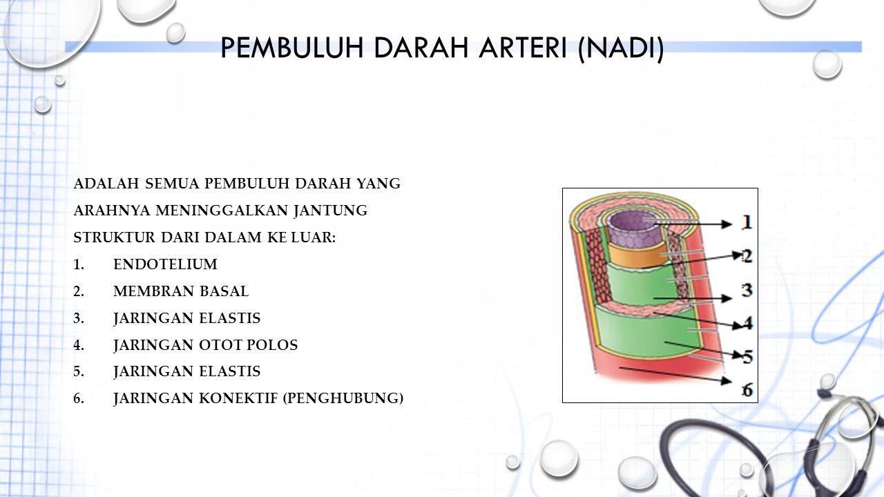 PEMBULUH DARAH ARTERI (NADI) ADALAH SEMUA PEMBULUH DARAH YANG ARAHNYA MENINGGALKAN JANTUNG STRUKTUR DARI DALAM KE LUAR: 1.ENDOTELIUM 2.MEMBRAN BASAL 3