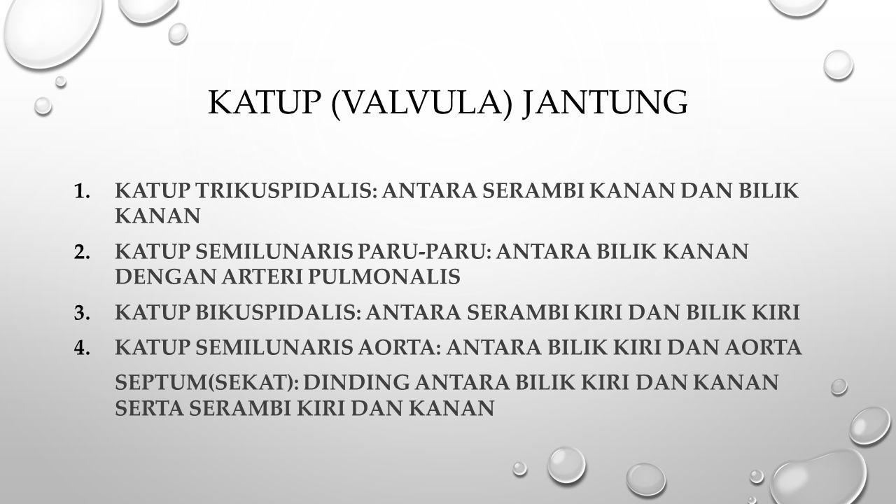 KATUP (VALVULA) JANTUNG 1.KATUP TRIKUSPIDALIS: ANTARA SERAMBI KANAN DAN BILIK KANAN 2.KATUP SEMILUNARIS PARU-PARU: ANTARA BILIK KANAN DENGAN ARTERI PU