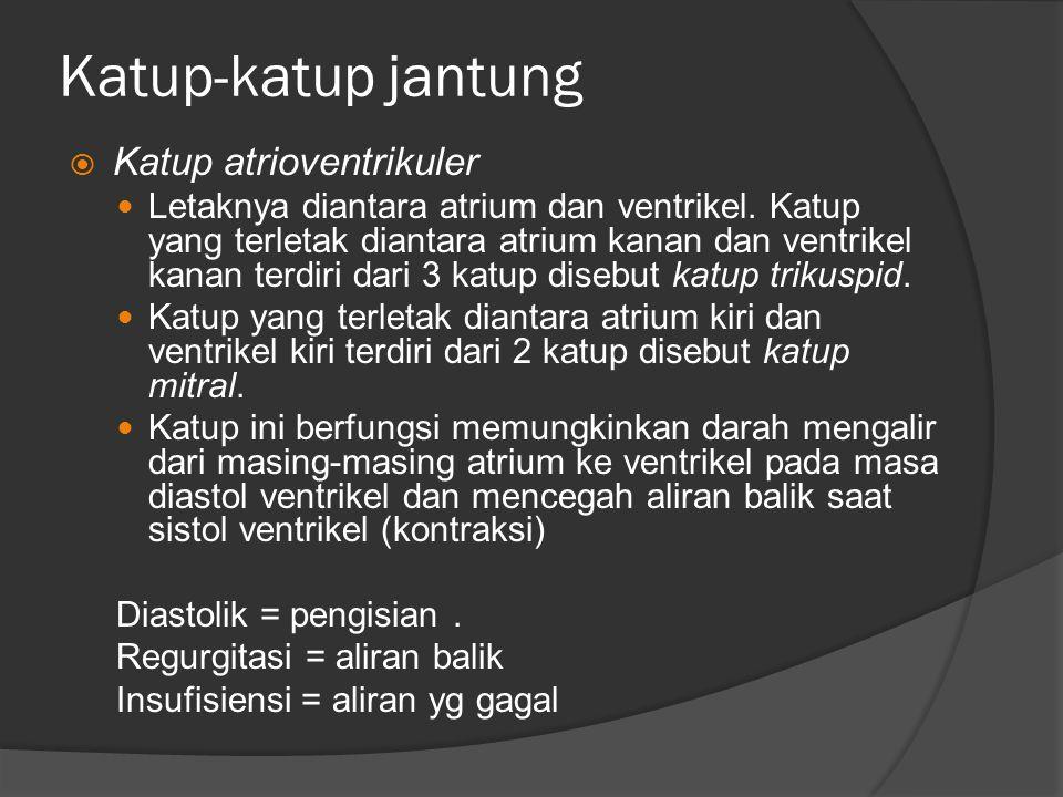 Katup-katup jantung  Katup atrioventrikuler Letaknya diantara atrium dan ventrikel. Katup yang terletak diantara atrium kanan dan ventrikel kanan ter