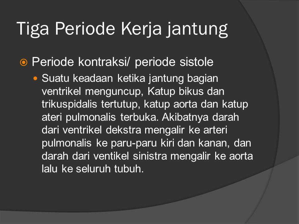 Tiga Periode Kerja jantung  Periode kontraksi/ periode sistole Suatu keadaan ketika jantung bagian ventrikel menguncup, Katup bikus dan trikuspidalis