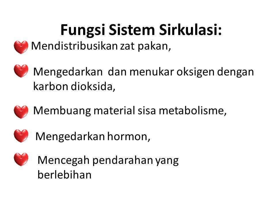Fungsi Sistem Sirkulasi: Mendistribusikan zat pakan, Mengedarkan dan menukar oksigen dengan karbon dioksida, Membuang material sisa metabolisme, Menge