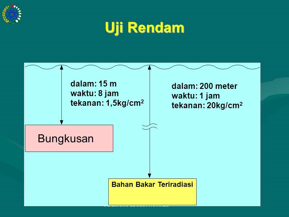 PDL.PR.TY.PPR.00.U06.BP Uji Rendam dalam: 15 m waktu: 8 jam tekanan: 1,5kg/cm 2 dalam: 200 meter waktu: 1 jam tekanan: 20kg/cm 2 Bungkusan Bahan Bakar Teriradiasi dalam: 15 m waktu: 8 jam tekanan: 1,5kg/cm 2 dalam: 200 meter waktu: 1 jam tekanan: 20kg/cm 2