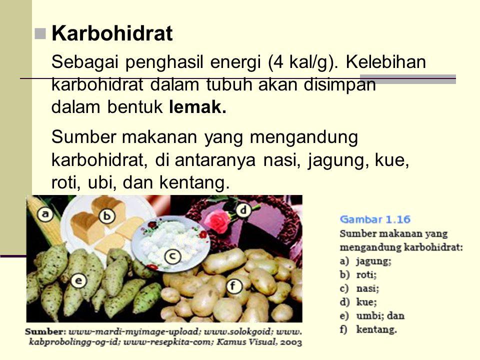 Garam-Garam Mineral Antara lain: kalsium(Ca), fosfor (p), besi (Fe), flour (F), iodium (I), NaCl.
