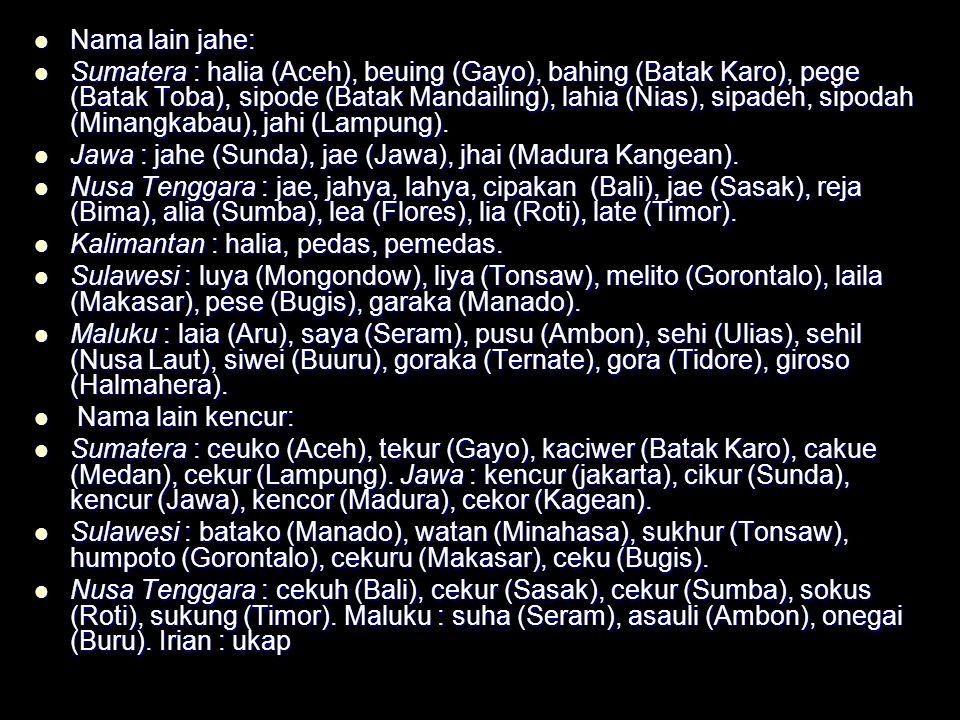 Nama lain jahe: Nama lain jahe: Sumatera : halia (Aceh), beuing (Gayo), bahing (Batak Karo), pege (Batak Toba), sipode (Batak Mandailing), lahia (Nias