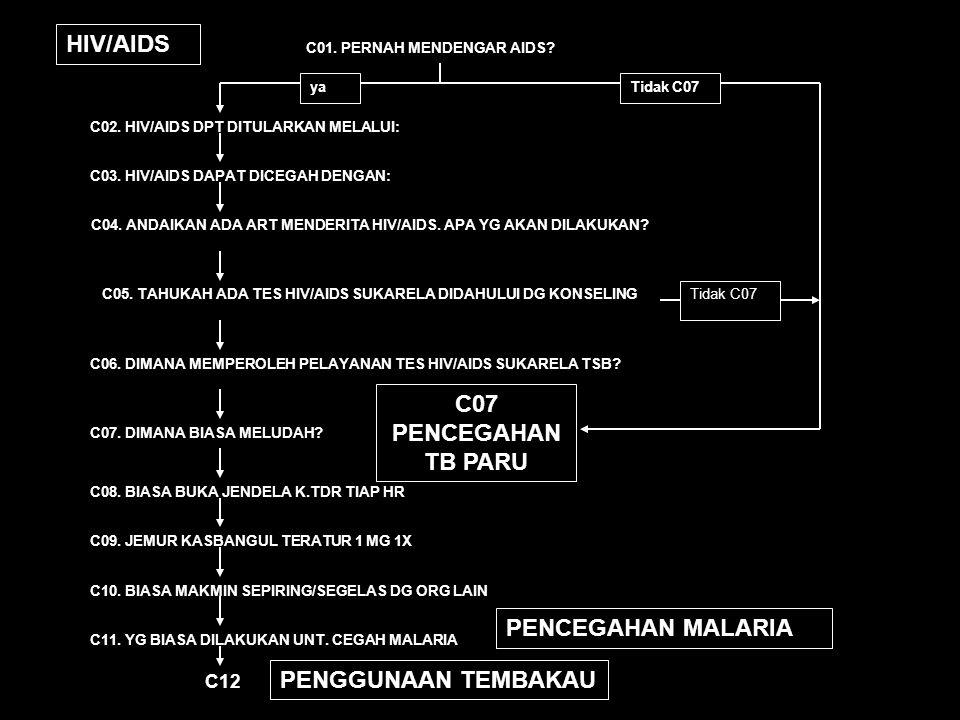 C12.MEROKOK SEBULAN TERAKHIR YA, TIAP HARI YA, KADANG2 TDK, SBLMNYA PERNAH TDK PERNAH SM SKL C13.