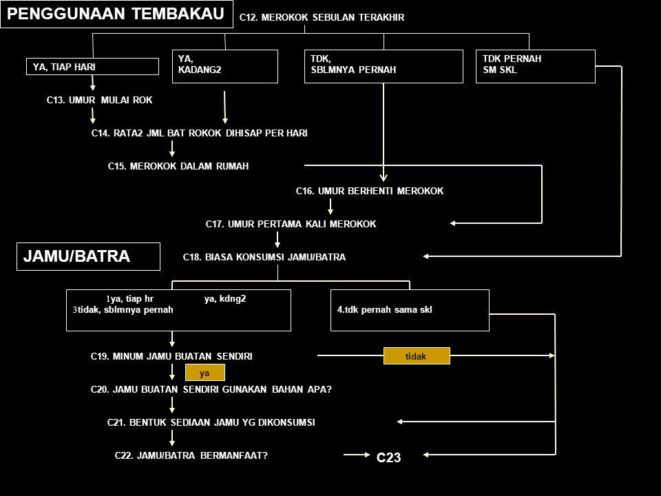 C12. MEROKOK SEBULAN TERAKHIR YA, TIAP HARI YA, KADANG2 TDK, SBLMNYA PERNAH TDK PERNAH SM SKL C13. UMUR MULAI ROK C14. RATA2 JML BAT ROKOK DIHISAP PER