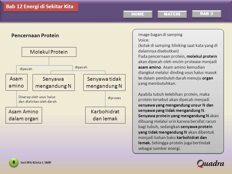Seri IPA Kimia 1 SMP 9 HOME MATERI BAB 3 Image: bagan di samping Voice: Hampir seluruh pencernaan lemak berlangsung di dalam usus halus.