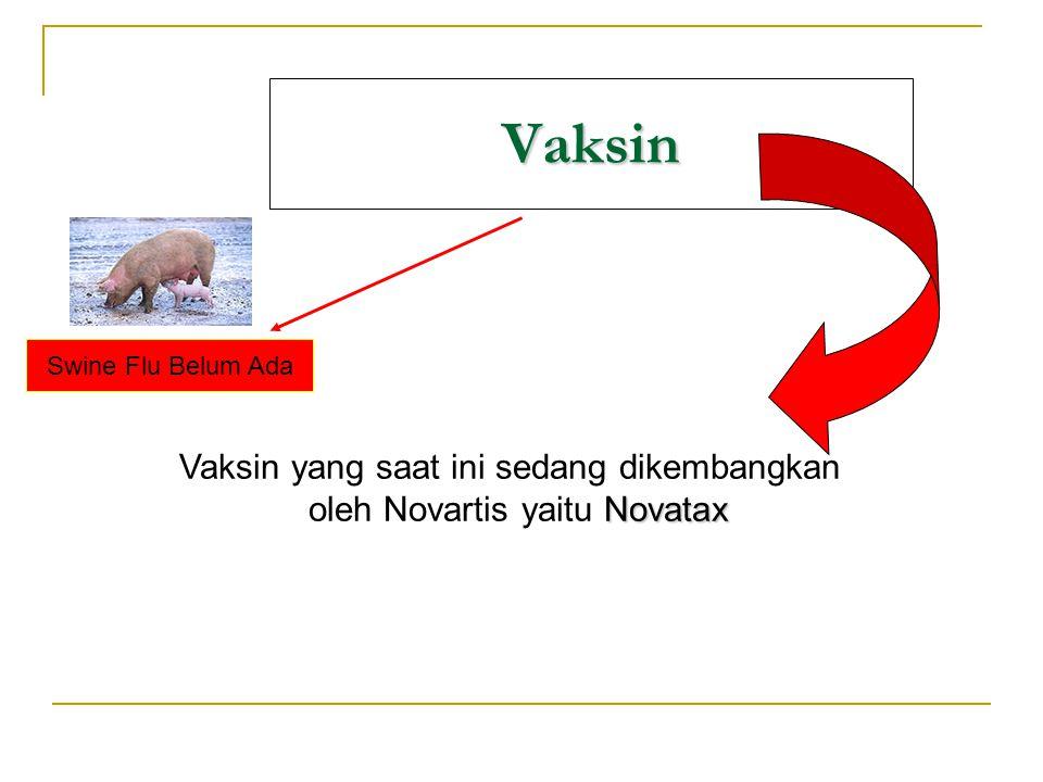 Vaksin Swine Flu Belum Ada Vaksin yang saat ini sedang dikembangkan Novatax oleh Novartis yaitu Novatax