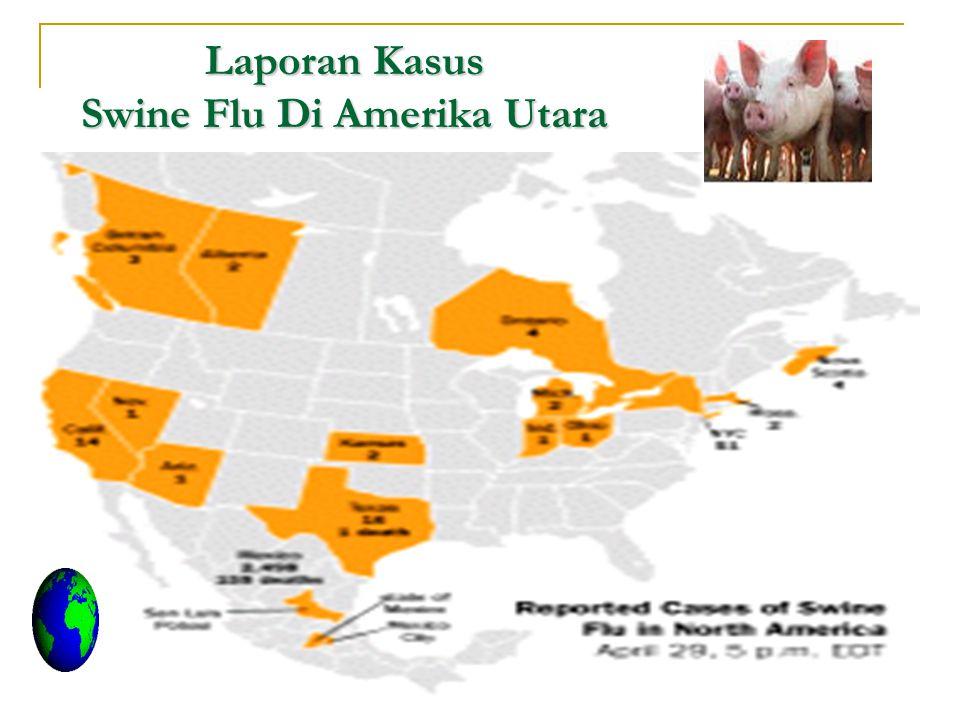 Laporan Kasus Swine Flu Di Amerika Utara