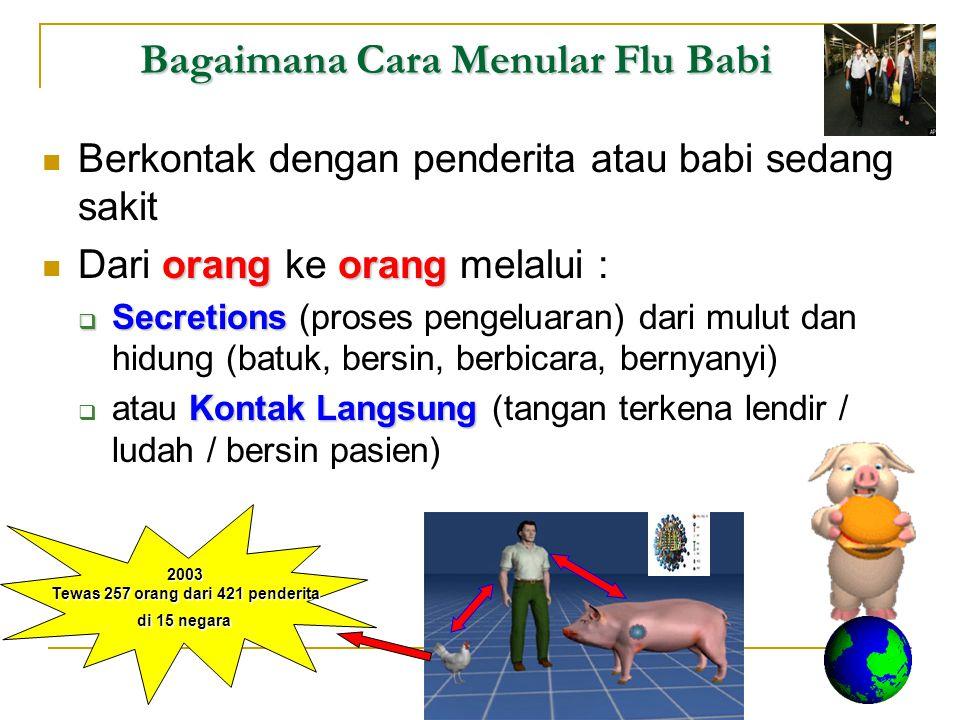 Bagaimana Cara Menular Flu Babi Berkontak dengan penderita atau babi sedang sakit orangorang Dari orang ke orang melalui :  Secretions  Secretions (