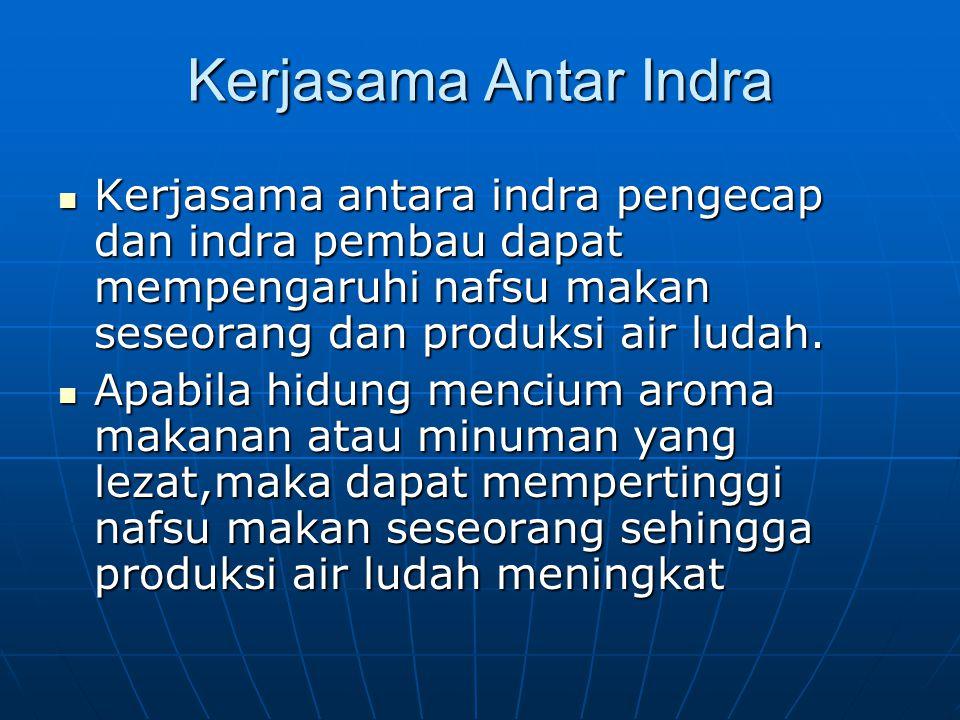 Kerjasama Antar Indra Kerjasama antara indra pengecap dan indra pembau dapat mempengaruhi nafsu makan seseorang dan produksi air ludah. Kerjasama anta