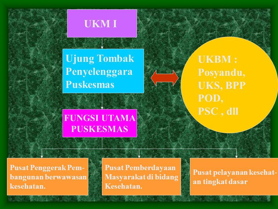UKM I Ujung Tombak Penyelenggara Puskesmas UKBM : Posyandu, UKS, BPP POD, PSC, dll Pusat Penggerak Pem- bangunan berwawasan kesehatan.