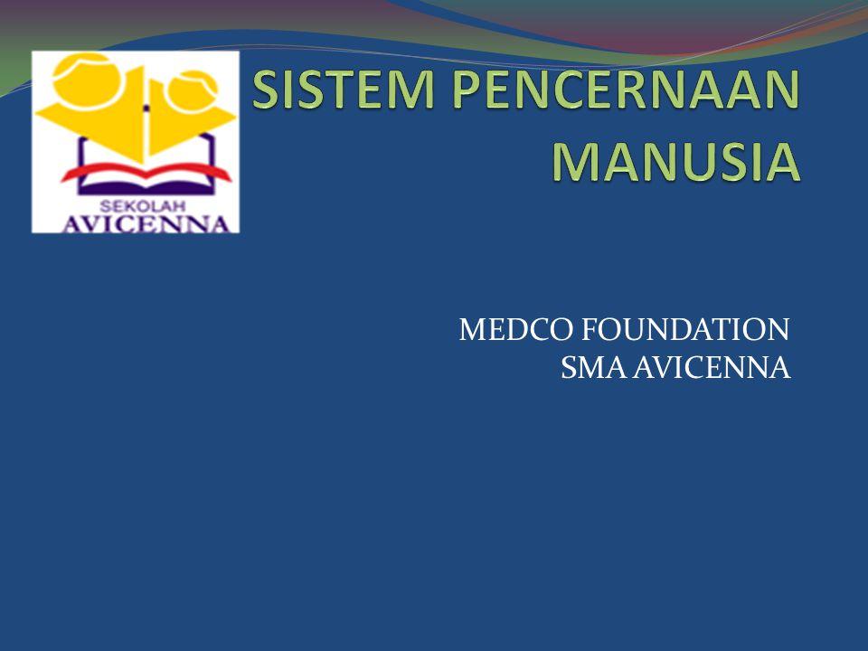 MEDCO FOUNDATION SMA AVICENNA