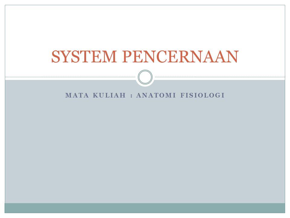 MATA KULIAH : ANATOMI FISIOLOGI SYSTEM PENCERNAAN