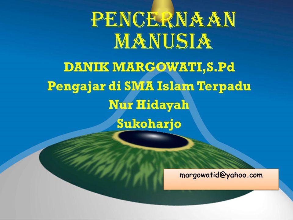 Pencernaan manusia DANIK MARGOWATI,S.Pd Pengajar di SMA Islam Terpadu Nur Hidayah Sukoharjo margowatid@yahoo.com