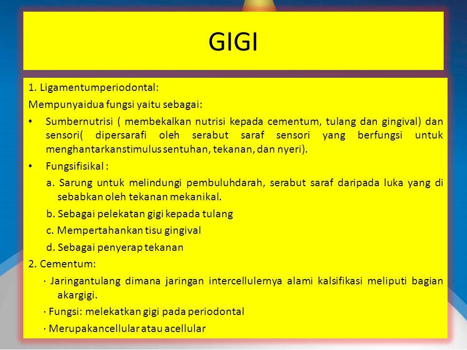 GIGI 1.
