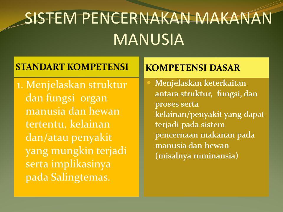 SISTEM PENCERNAKAN MAKANAN MANUSIA STANDART KOMPETENSI KOMPETENSI DASAR 1. Menjelaskan struktur dan fungsi organ manusia dan hewan tertentu, kelainan