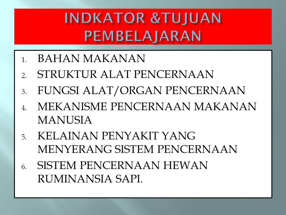 1. BAHAN MAKANAN 2. STRUKTUR ALAT PENCERNAAN 3. FUNGSI ALAT/ORGAN PENCERNAAN 4. MEKANISME PENCERNAAN MAKANAN MANUSIA 5. KELAINAN PENYAKIT YANG MENYERA