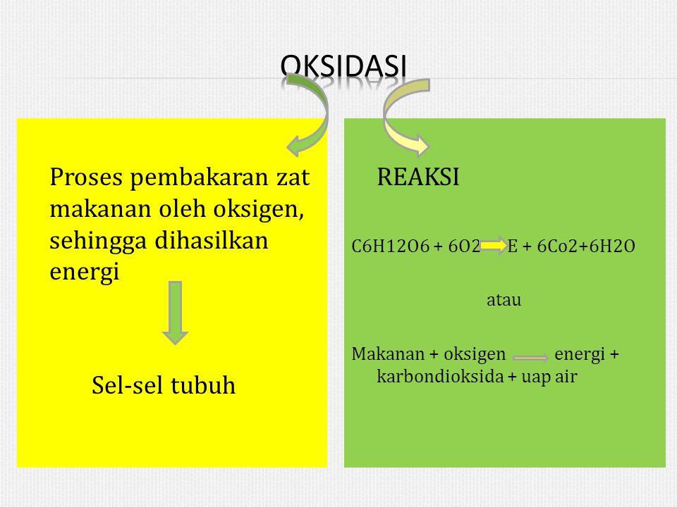 Proses pembakaran zat makanan oleh oksigen, sehingga dihasilkan energi Sel-sel tubuh REAKSI C6H12O6 + 6O2 E + 6Co2+6H2O atau Makanan + oksigen energi