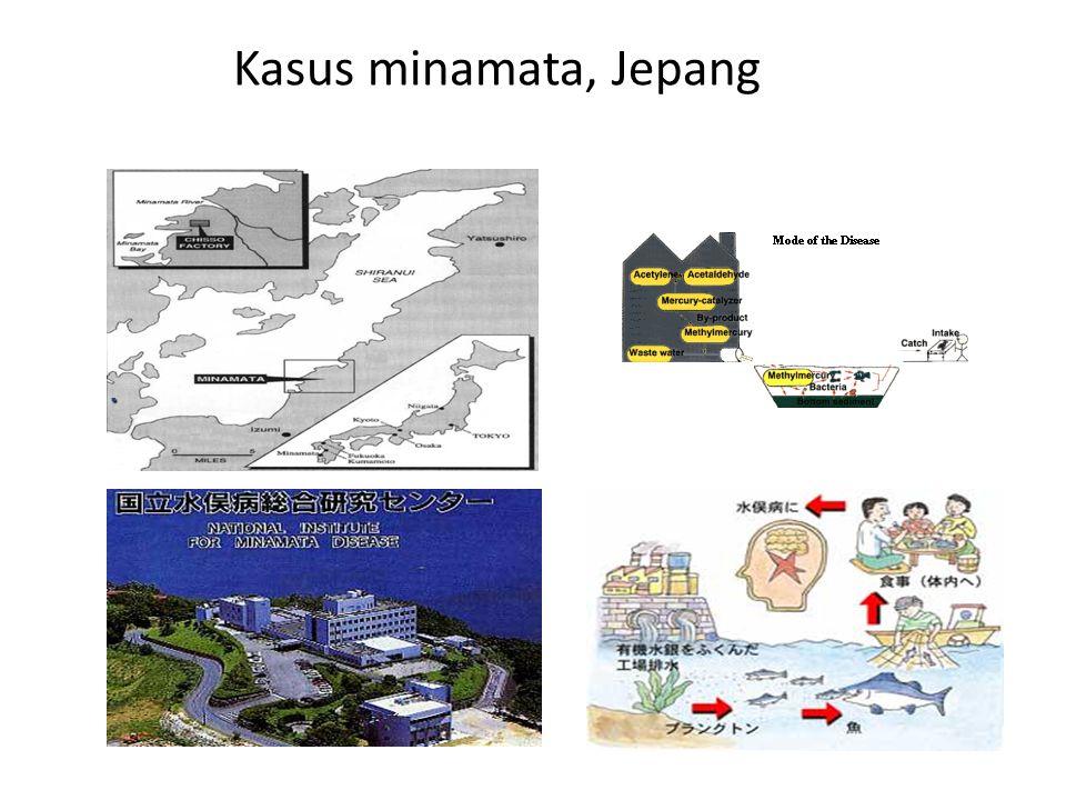 Kasus minamata, Jepang....
