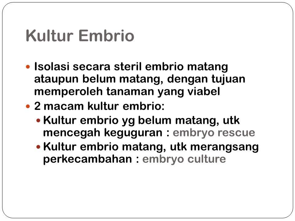 Kultur Embrio Isolasi secara steril embrio matang ataupun belum matang, dengan tujuan memperoleh tanaman yang viabel 2 macam kultur embrio: Kultur embrio yg belum matang, utk mencegah keguguran : embryo rescue Kultur embrio matang, utk merangsang perkecambahan : embryo culture
