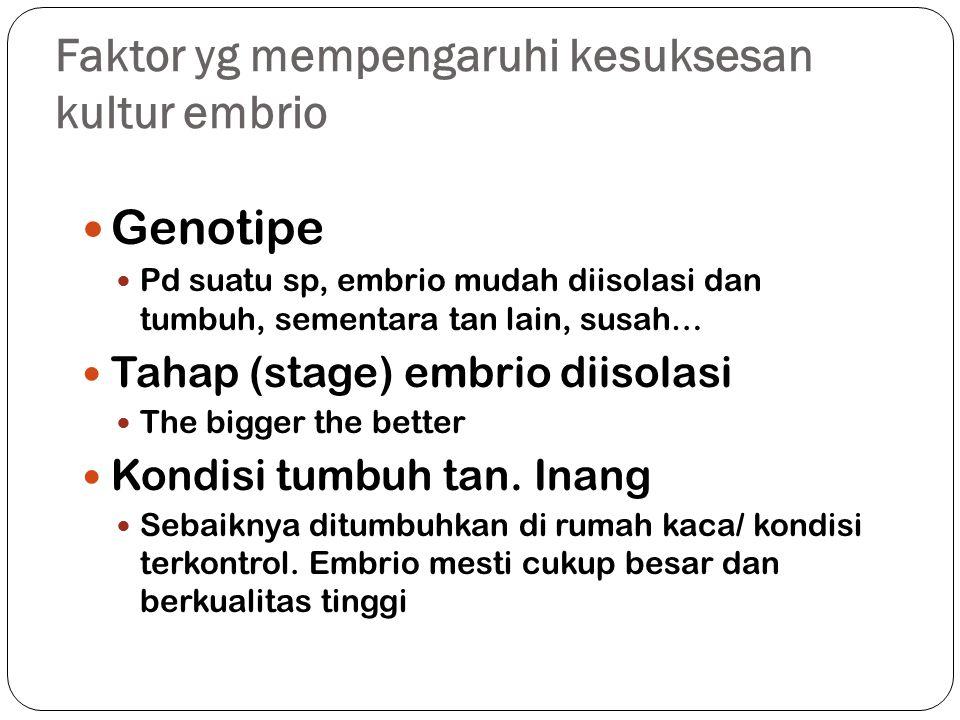 Faktor yg mempengaruhi kesuksesan kultur embrio Genotipe Pd suatu sp, embrio mudah diisolasi dan tumbuh, sementara tan lain, susah… Tahap (stage) embrio diisolasi The bigger the better Kondisi tumbuh tan.